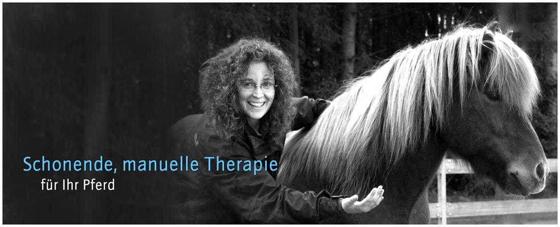 Chiropraktik für das Pferd